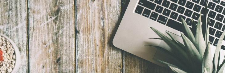 laptop és ananász egy képen