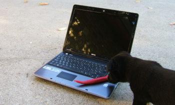 benqutya használt laptop számítógép szerelés